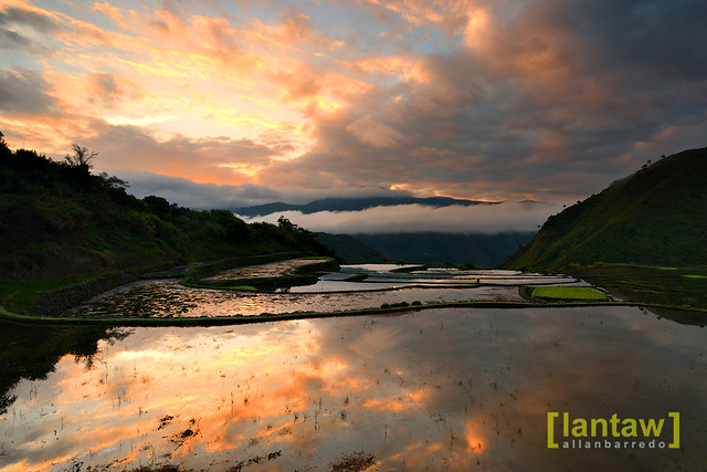 Sunrise @ Buscalan Rice Terraces