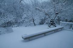 20130322 - Surprise Snowfall