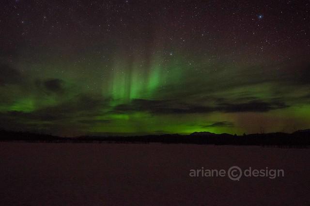 Yukon Aurora Borealis 4_7_2013-17