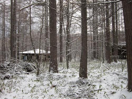 また降った雪/東側の窓から 2013年4月11日8:27 by Poran111