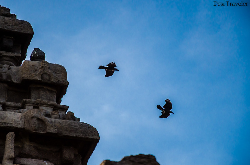 Shore Temple Mahabalipuram Tamil Nadu with birds flying near top of temple