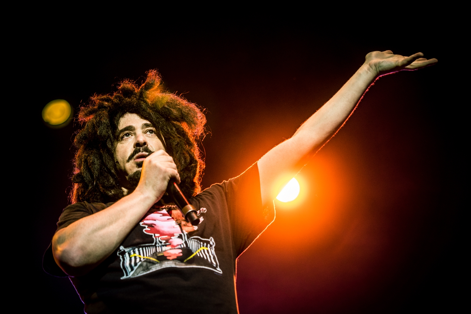 Counting Crows 49
