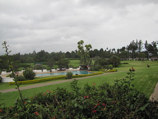 Pool & Grounds