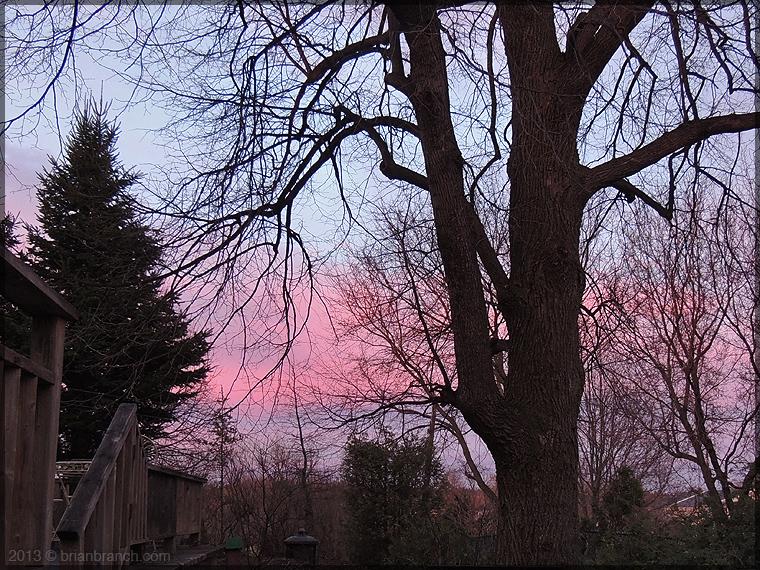 DSCN0746_pink_sky