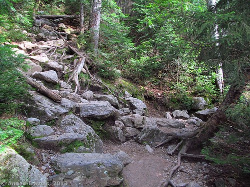 The Gorge Trail Junction: the Ammonoosuc Ravine Trail goes left, The Gorge Trail goes right, White Mountain National Forest, New Hampshire