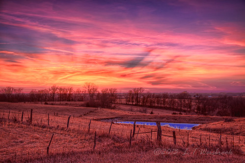 pink winter sunset orange cold countryside pond iowa pastels barbedwirefence frozenpond