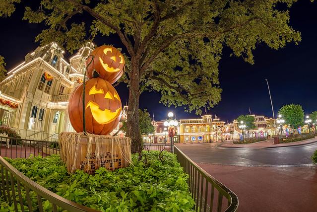 Late Nights In Halloweentown