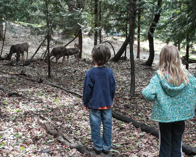 deer+kids
