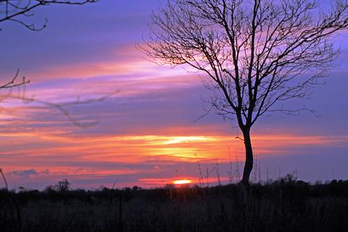 Sunset by TonyKRO