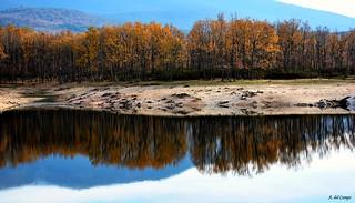 Reflejo de otoño