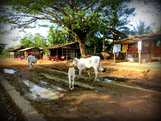 Village at the end of the bamboo train line, Battambang