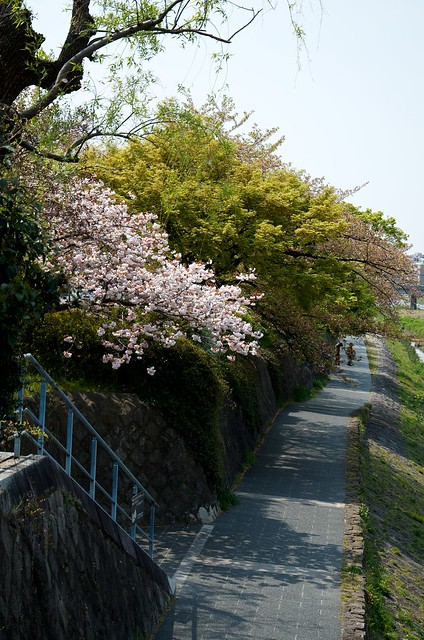 kyoto134-56