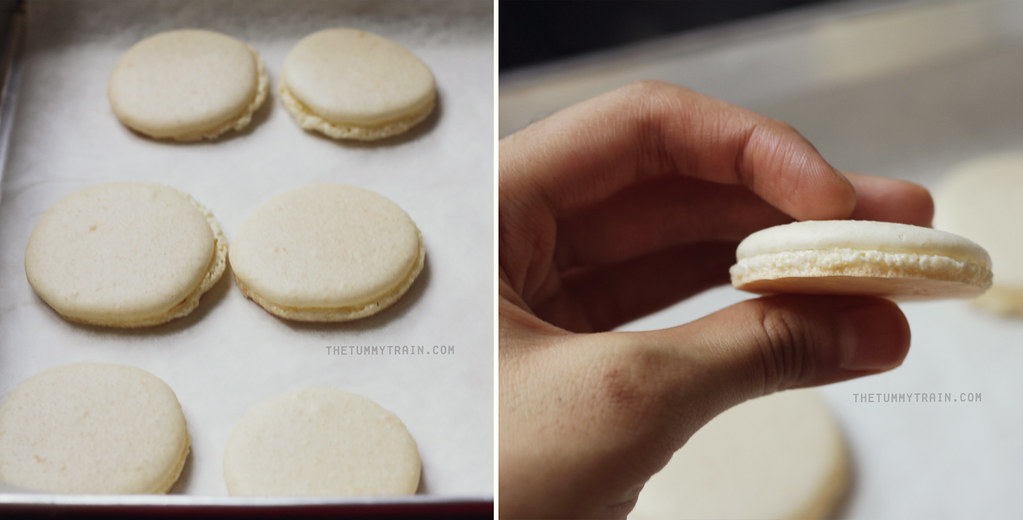 8694602998 060f6639d1 b - A semblance of Lemon Macarons + I need a new oven
