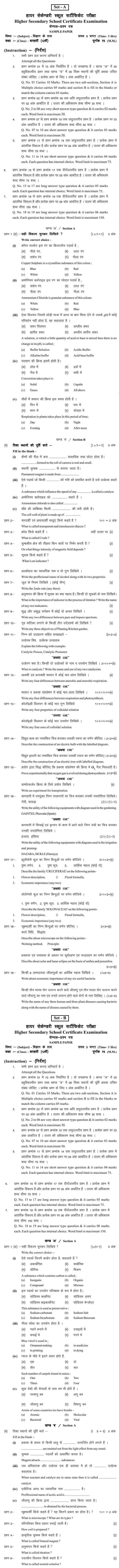 Chattisgarh Board Class 12 Elements of Science Sample Paper