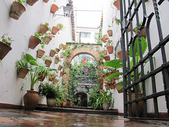 Garden Wall_Spain