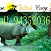 Sun, 05/26/2013 - 17:58 - www.assamyellowpage.com number one Business web media in Assam