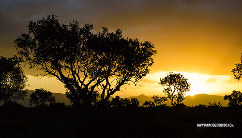 Kenya - Pokots 20