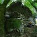 Abri sous roche 1 de Septfontaine du bois le Pessolier - Malans by francky25