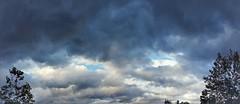 Fall skies, Duvall, Washington