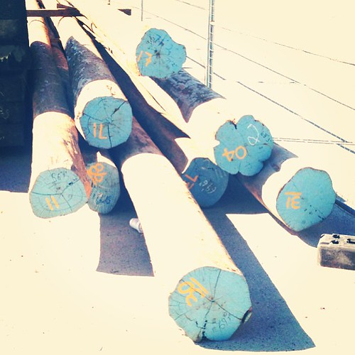 Dock pylons painted and numbered. #Maine #nautical #TiffanyBlue #typography #PlumBlossomLogs #KungFu