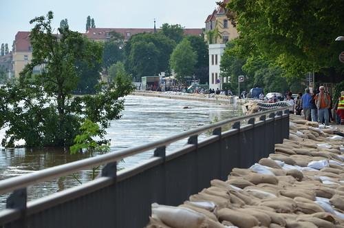 9022480419 974677a51e Elbehochwasser   Juni 2013