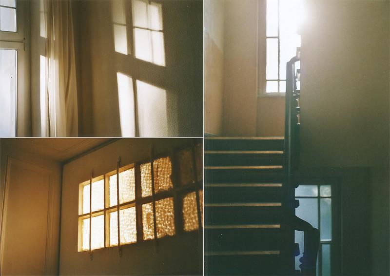 licht und schatten im herbst