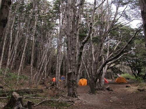 Torres del Paine: trek du W. Jour 2: camping gratuit Italiano