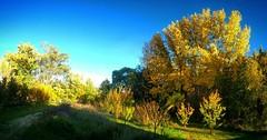 Fall on the farm.