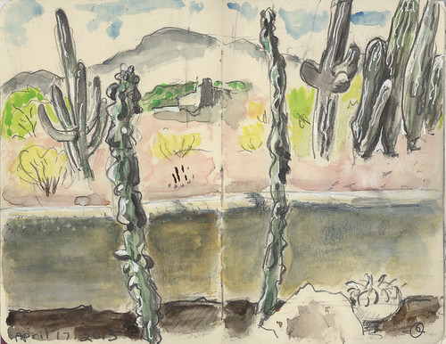 Cactuses Inside Adobe Wall, Saguaro Outside