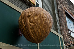 Big Nut