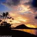 Hawaii2016-534