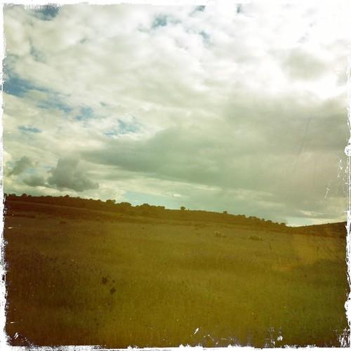 Por los campos de la Jara ...;-)