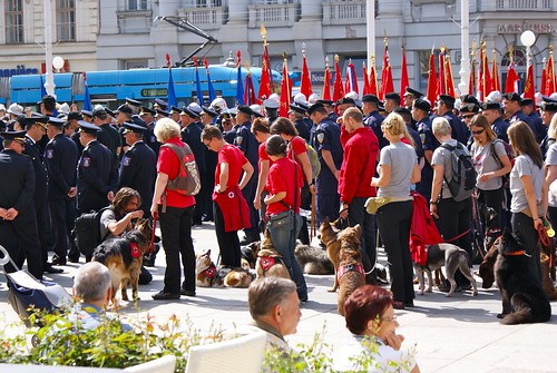 Service Dogs in Zagreb Fireman's Day