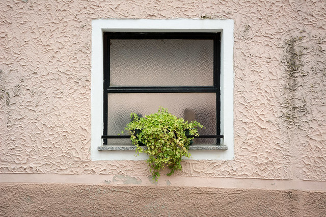 italian style window with pot plant