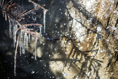 Hard Light (Central Park Zoo Icicles), NYC by flatworldsedge
