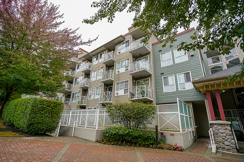 Storyboard of Unit 311 - 528 Rochester Ave, Coquitlam