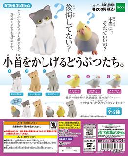 Epoch 療癒又逗趣「歪頭小貓」與「歪頭鸚鵡」小首をかしげるどうぶつたち。
