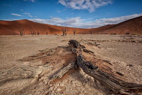 africa colour landscape textures namibia sossusvlei deadvlei namibnaukluftpark leefilters canon5dmarkii