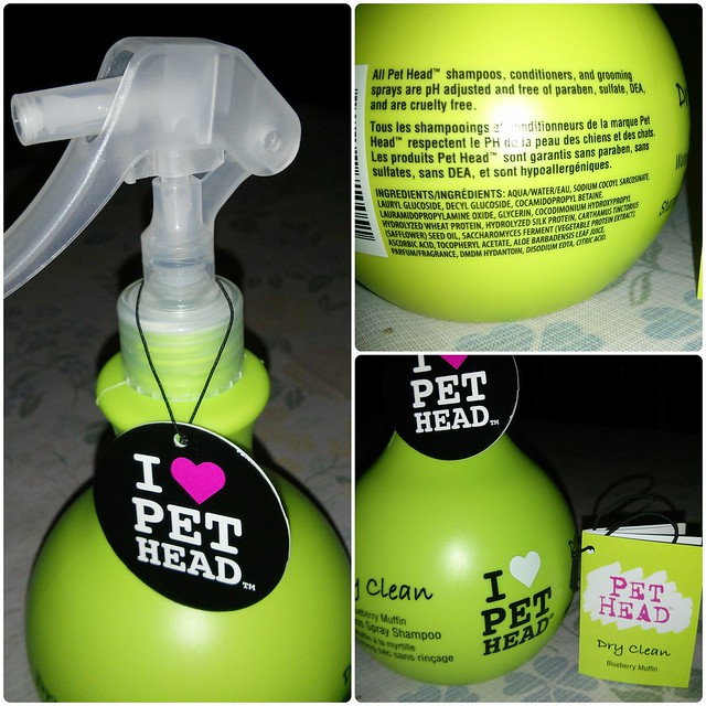 Pet Head Dry Clean