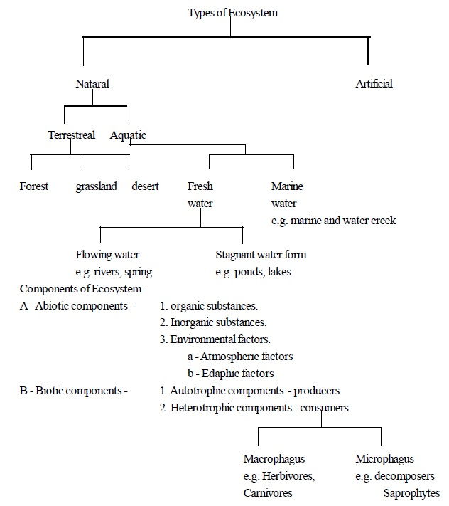 Biology Question Bank For Entrance Exam Ecosystem