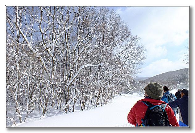 雪の付く木々は日光を美しく反射させ,参加者の目を楽しませる.