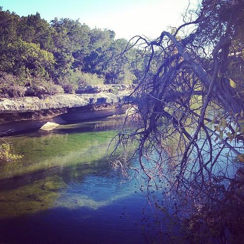 Back home, soaking up the water magic at Bull Creek today...