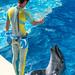 150216 Enoshima Aquarium-27.jpg
