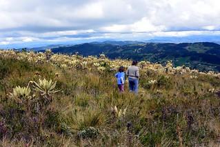 Cerro el Tablazo, Colombia. www.escape.co