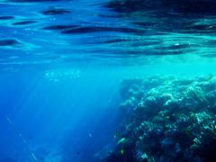 sunshine under water