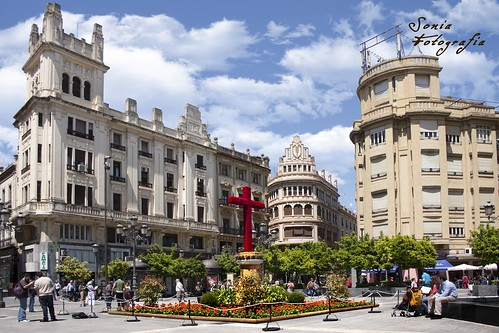 cruz,cruces,mayo,Córdoba,fotografia