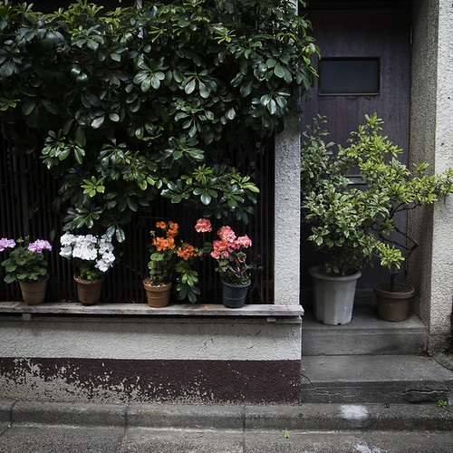Ledge with Potted Plants, and Potted Plants Door, Monzennakacho
