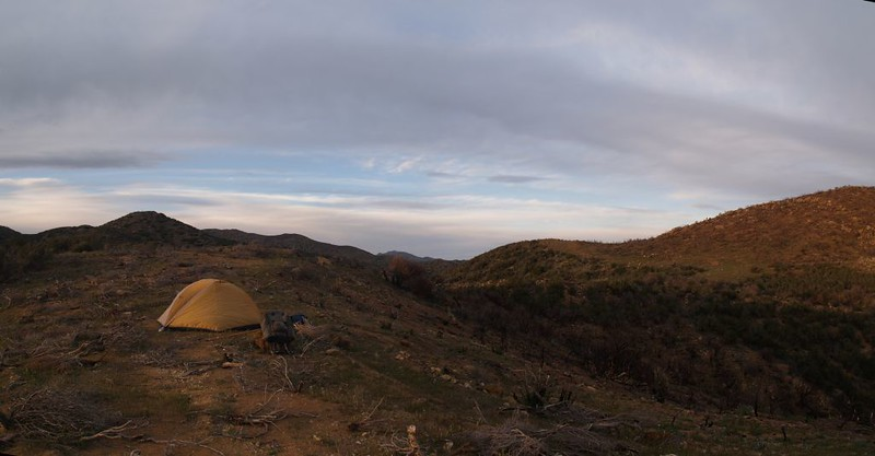 PCT San Felipe Hills - our tent in the morning
