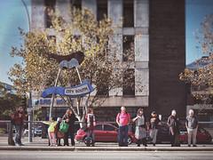 Everyday #Adelaide No. 367