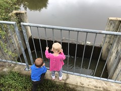 The twins watch a waterfall today on our walk